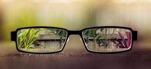 Как улучшить зрение без очков у.бейтс м. корбетт