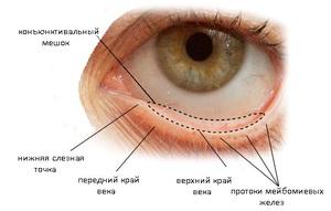 Конъюнктивальный мешок глаза где